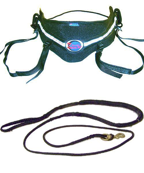 Canicross basic Einsteiger-Set